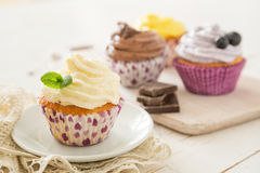Selection of colorful cupcakes, white background royalty free stock photography