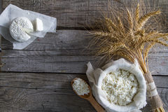 Selection of dairy products and wheat Stock Photography
