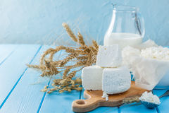 Selection of dairy products Stock Images