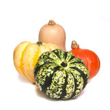 Selection of deorative gourds or squashes Stock Photography
