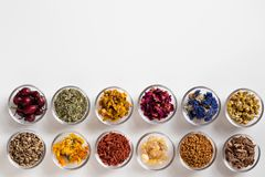 Selection of dried herbs on a white background with copy space,. Selection of herbs on white background with copy space - dried rose hips, horsetail, mullein Royalty Free Stock Photography