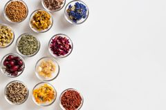 Selection of dried herbs on a white background with copy space,. Selection of herbs on white background with copy space - dried rose hips, horsetail, mullein Royalty Free Stock Photo