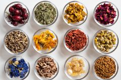 Selection of dried herbs on a white background, top view. Selection of herbs on white background - dried rose hips, horsetail, mullein, rose petals, milk thistle Stock Photos