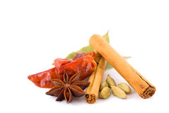 Selection of Exotic Spices Royalty Free Stock Photography