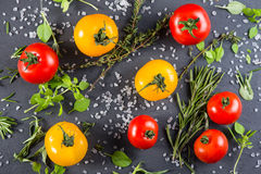 Selection of farm fresh tomatoes with herbs Stock Image