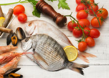 Selection of fish , mollusk and crustaceans Stock Photography