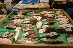 A selection of fish at Tsukiji fish market Tokyo stock photos