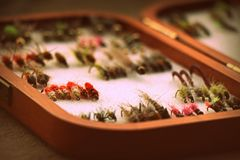 Selection of flies in wooden box . trout and grayling. Selection of nymphs and bug in wooden Wheatley box. These flies work on both trout and grayling stock photos