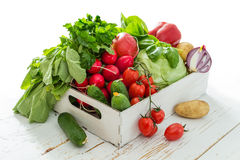 Selection of fresh vegetables from farmers market. Copy space Stock Photos