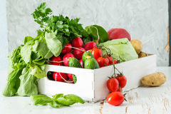 Selection of fresh vegetables from farmers market. Copy space Royalty Free Stock Photos