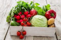 Selection of fresh vegetables from farmers market. Copy space Royalty Free Stock Image