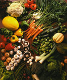 Selection of Fresh Vegetables Stock Images