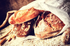 Selection of freshly baked bread in paper bag Stock Image
