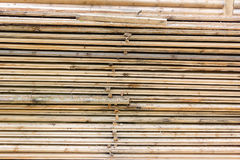 Selection of freshly sawn timber material Royalty Free Stock Image