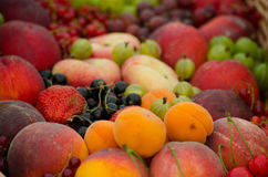 A Selection of Fruit Stock Photo