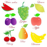 Selection fruit. Selection of fresh colorful fruit with labels vector illustration on white Stock Image