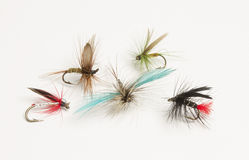 Selection of hand tied fishing flies Royalty Free Stock Photo
