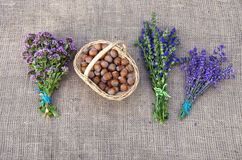 Selection of herbs and hazelnuts on linen background. Selection of medical herbs and hazelnuts on linen background royalty free stock photos