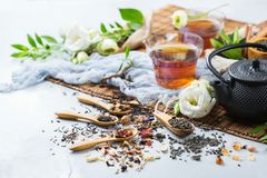Selection of japanese chinese herbal masala tea teapot royalty free stock photos