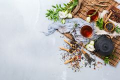 Selection of japanese chinese herbal masala tea teapot. Food and drink, still life concept. Selection assortment of different japanese chinese herbal masala tea Royalty Free Stock Photos