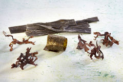 Selection of Japanese seaweeds Royalty Free Stock Images