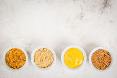 Selection of 4 kinds of mustard Stock Images