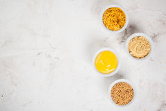 Selection of 4 kinds of mustard Stock Photography