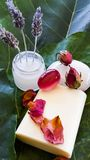 Spa treatment preparation with rose petals and lavender cream stock image
