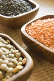 Selection of lentils Stock Image