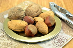 Selection of mixed nuts Royalty Free Stock Photography