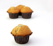 Selection of Muffins Royalty Free Stock Photos