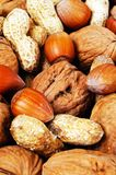 Selection of nuts. Stock Image