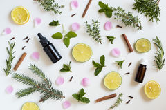Free Selection Of Essential Oils And Herbs On A White Background Stock Images - 94198624