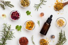 Selection Of Essential Oils And Herbs On A White Background, Top Stock Photo