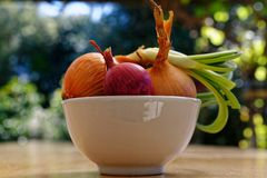A selection of onions, one of which has started to grow stock photos