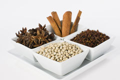 Selection of Oriental Spices. Star Anise, Cinnamon, White Pepper and Coriander Seed in Ceramic Bowl on White Background Royalty Free Stock Image