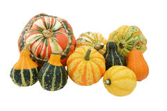 Selection of ornamental gourds with striped Turks turban squash Royalty Free Stock Photos