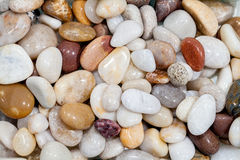 Selection of polished beach pebbles. Decorative garden aggregate. Used for ornamental ground cover. High quality rounded stones. Background natural world Royalty Free Stock Photos