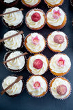 Selection of pretty decorated cupcakes shot overhead Royalty Free Stock Images