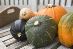 Selection of pumpkin and squash Stock Photo