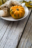 Selection of pumpkins, wheat. Rustic wood background Royalty Free Stock Image
