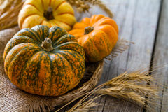Selection of pumpkins, wheat. Rustic wood background toned Royalty Free Stock Photography