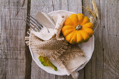 Selection of pumpkins, wheat. Rustic wood background toned Stock Images