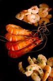 Selection of Shrimps. A selection of shelled and unshelled prawns/shrimp Royalty Free Stock Photo