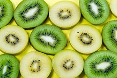 Selection of slices of yellow and green kiwi fruit on a bright high contrast yellow background. Horizontal view of slices of golden yellow and green kiwi fruit stock image
