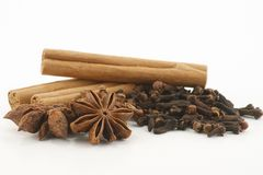 Selection of spices. Cinnamon cloves and star anise on a white background Royalty Free Stock Image