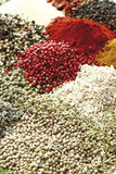 A selection of spices Royalty Free Stock Image