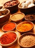 Selection of spices Royalty Free Stock Images
