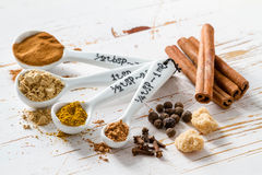 Selection of spices for christmas and thanksgiving. White wood background Stock Photo