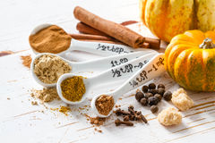 Selection of spices for christmas and thanksgiving. White wood background Stock Image